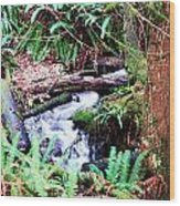 The Unknown Creek Wood Print