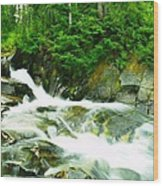 The Upper Paradise River Wood Print