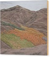 The Valley Of Color Wood Print