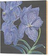 The Vanda Orchid Wood Print