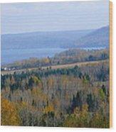 The Vast Landscape Wood Print