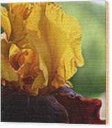 The Velvet Iris Wood Print