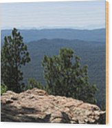 The View Wood Print