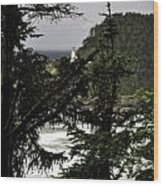 The View Of The Heceta Lighthouse Wood Print