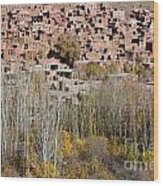 The Village Of Abyaneh In Iran Wood Print