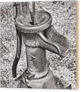 The Village Pump Wood Print