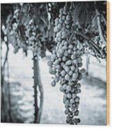 The Vineyard   Bw Wood Print
