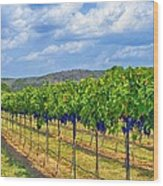 The Vineyard In Color Wood Print by Kristina Deane