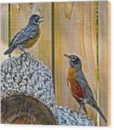 The Voice Lesson Wood Print