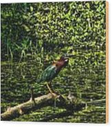 The Wader Wood Print