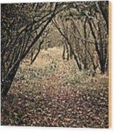 The Walk Wood Print