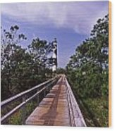 The Walk To Cape Lookout Wood Print