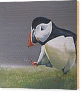 The Walking Puffin Wood Print by Eric Burgess-Ray