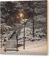 The Warmth In The Snow Wood Print