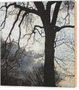 The Washington Monument Lost In The Trees Wood Print