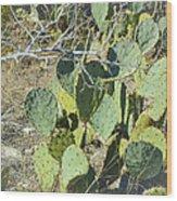 Cedar Park Texas Prickly Pear Cactus Wood Print