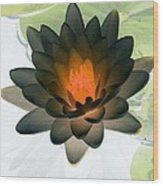 The Water Lilies Collection - Photopower 1035 Wood Print