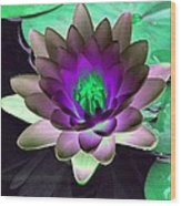 The Water Lilies Collection - Photopower 1114 Wood Print