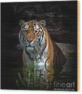 The Watering Hole Wood Print