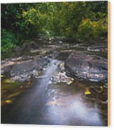 The Waters Of The Eureka Waterfalls. Mauritius Wood Print
