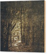 The Way Out Wood Print