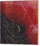 The Webs We Weave Wood Print
