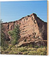 The Wedge Canyon Dechelly Wood Print