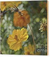 The Weed Series Number 123 Wood Print