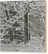 The Weight Of Winter Wood Print