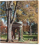 The Well - Davidson College Wood Print