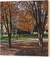 The Well In The Distance-davidson College Wood Print