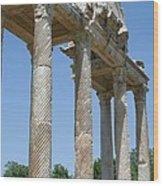 The Western Pediment Of The Tetrapylon Wood Print by Tracey Harrington-Simpson