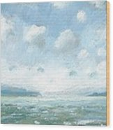 The Western Solent Part One Wood Print by Alan Daysh