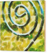 The Wet Whirl  Wood Print