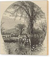 The White Mountains From The Conway Meadows 1872 Engraving Wood Print