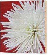 The White Mum Wood Print