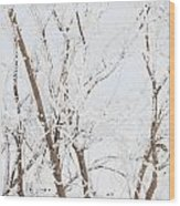 The Whites Of Winter Wood Print