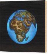 The Whole World Wood Print