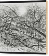 The Wicked Trees Wood Print
