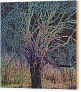 10994 The Widow Tree Wood Print