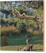 The Wildebeest Wood Print