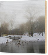 The Willows In Winter - Newtown Square Pa Wood Print