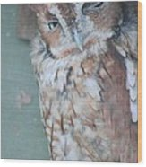 The Wink Wood Print by Rhonda Humphreys