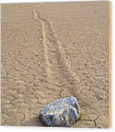 The Winner Death Valley Moving Rock Wood Print