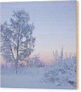 The Winter Light Wood Print