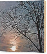 The Winter Skies Wood Print by Rhonda Humphreys