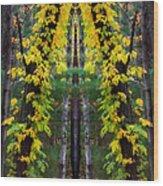 The Wishbone Tree Wood Print