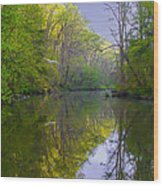 The Wissahickon Creek In The Morning Wood Print