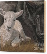 The Wolf And The Lamb Wood Print by Sheri Gordon