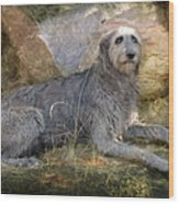 The Wolfhound  Wood Print by Fran J Scott